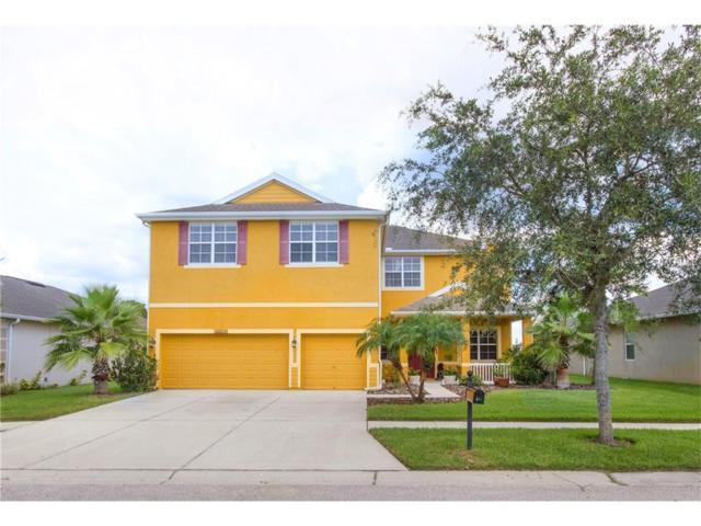 20055 Oakflower Avenue, Tampa, FL 33647 (MLS #T2894460) :: Cartwright Realty