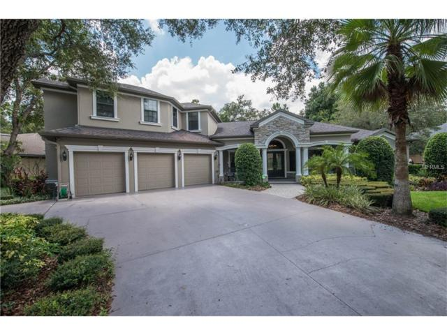 17836 Mission Oak Drive, Lithia, FL 33547 (MLS #T2894482) :: Dalton Wade Real Estate Group