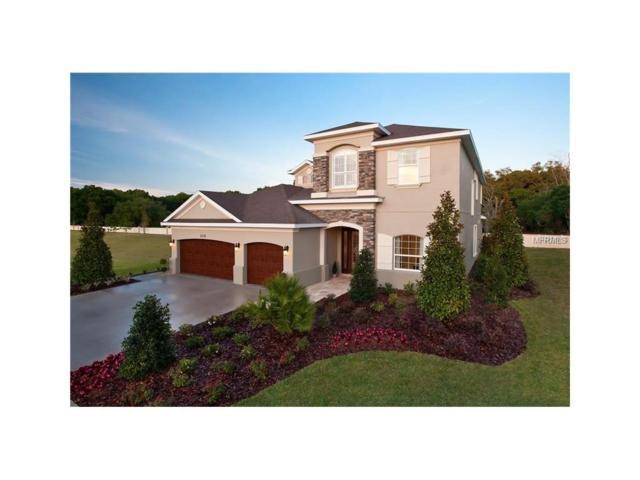11321 Hidden Valley Lane, Riverview, FL 33569 (MLS #T2894494) :: Delgado Home Team at Keller Williams