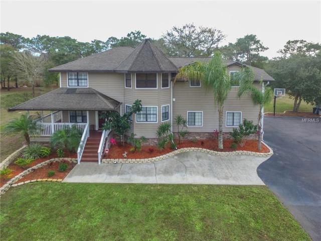 7110 W County Line Road, Odessa, FL 33556 (MLS #T2894513) :: Team Bohannon Keller Williams, Tampa Properties
