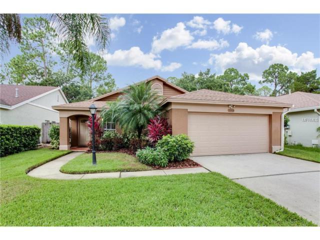 10408 Springrose Drive, Tampa, FL 33626 (MLS #T2894516) :: Alicia Spears Realty