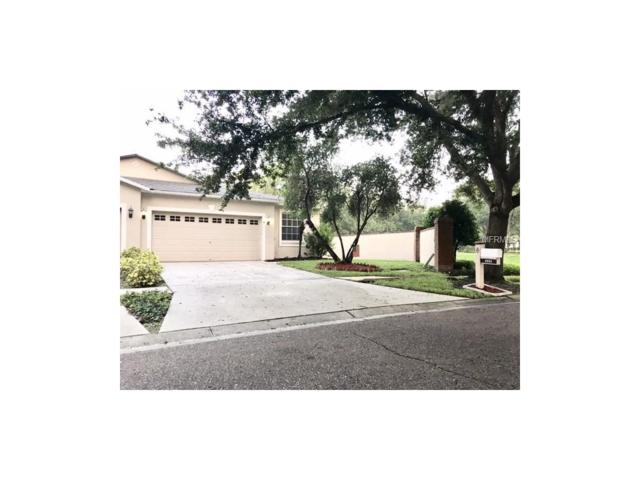 6905 Gray Oak Place, Riverview, FL 33578 (MLS #T2894594) :: KELLER WILLIAMS CLASSIC VI