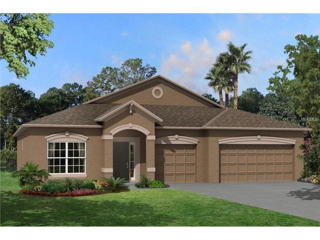11438 Leland Groves Drive, Riverview, FL 33579 (MLS #T2894640) :: KELLER WILLIAMS CLASSIC VI