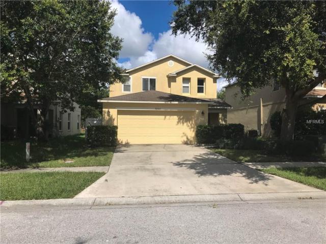 32343 Fish Hook Loop, Wesley Chapel, FL 33545 (MLS #T2894687) :: Cartwright Realty