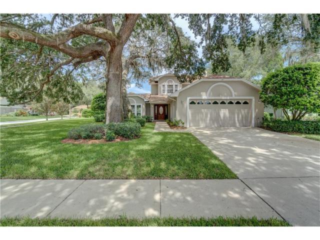 13802 Sumac Place, Tampa, FL 33625 (MLS #T2894704) :: KELLER WILLIAMS CLASSIC VI