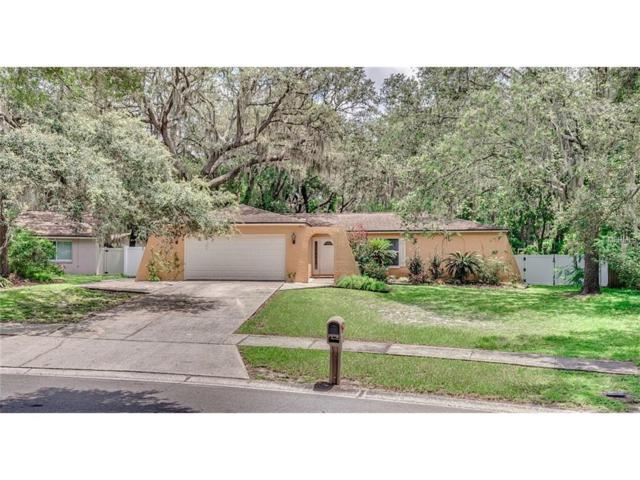 3907 Oak Hammock Drive, Brandon, FL 33511 (MLS #T2894710) :: KELLER WILLIAMS CLASSIC VI