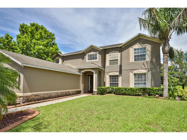 11322 Callaway Pond Drive, Riverview, FL 33579 (MLS #T2894781) :: KELLER WILLIAMS CLASSIC VI