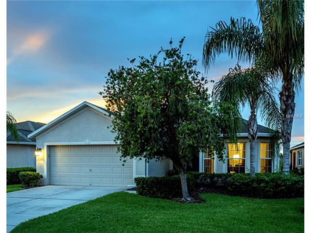 29140 Coharie Loop, San Antonio, FL 33576 (MLS #T2894910) :: Delgado Home Team at Keller Williams