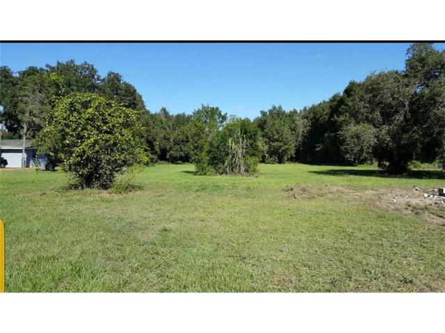 11802 Davis Pool Road, Seffner, FL 33584 (MLS #T2894912) :: Revolution Real Estate
