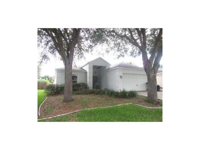 25209 Hyde Park Boulevard, Land O Lakes, FL 34639 (MLS #T2894918) :: Cartwright Realty