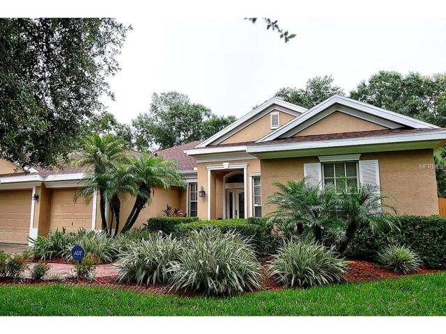 14919 Devonshire Woods Place, Tampa, FL 33624 (MLS #T2894928) :: Team Bohannon Keller Williams, Tampa Properties