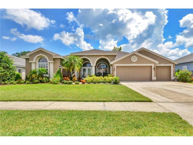 12009 Wandsworth Drive, Tampa, FL 33626 (MLS #T2894937) :: Delgado Home Team at Keller Williams