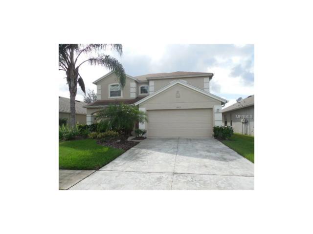 3105 Sunwatch Drive, Wesley Chapel, FL 33544 (MLS #T2894943) :: The Duncan Duo & Associates