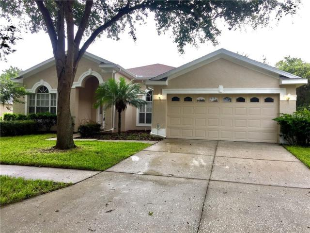 19148 Dove Creek Drive, Tampa, FL 33647 (MLS #T2894946) :: Team Bohannon Keller Williams, Tampa Properties