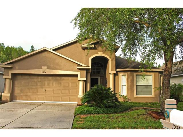 1234 Katahdin Court, Wesley Chapel, FL 33543 (MLS #T2894971) :: Team Bohannon Keller Williams, Tampa Properties