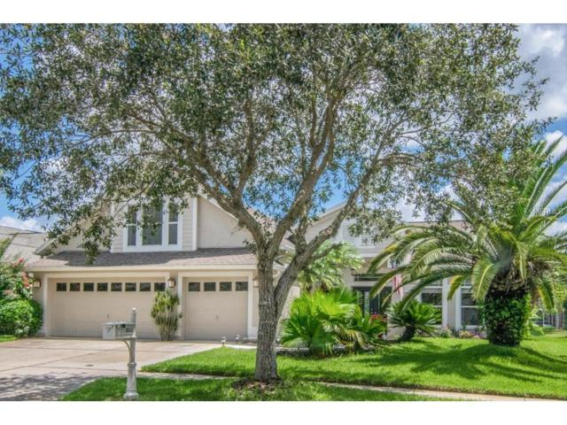 10143 Whisper Pointe Drive, Tampa, FL 33647 (MLS #T2895096) :: Cartwright Realty
