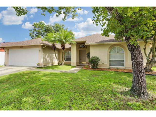 507 Rapid Falls Drive, Brandon, FL 33511 (MLS #T2895102) :: Team Bohannon Keller Williams, Tampa Properties