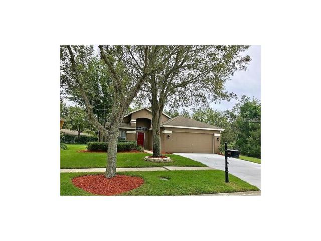 9852 Bayboro Bridge Drive, Tampa, FL 33626 (MLS #T2895106) :: Delgado Home Team at Keller Williams