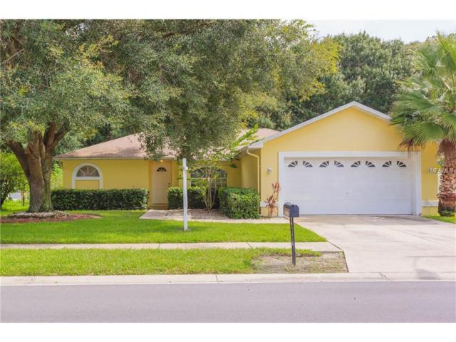 24423 Painter Drive, Land O Lakes, FL 34639 (MLS #T2895108) :: Cartwright Realty