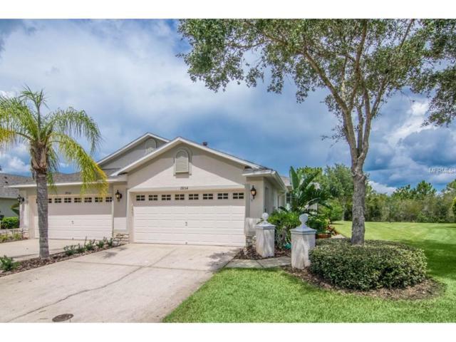 19154 Lake Audubon Drive, Tampa, FL 33647 (MLS #T2895147) :: Cartwright Realty