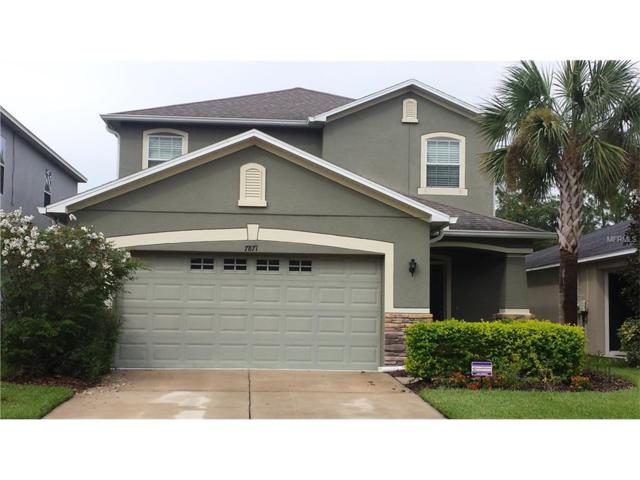 7871 Tuscany Woods Drive, Tampa, FL 33647 (MLS #T2895167) :: Cartwright Realty