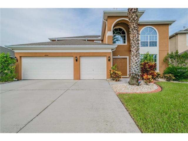 20106 Oakflower Avenue, Tampa, FL 33647 (MLS #T2895201) :: Cartwright Realty