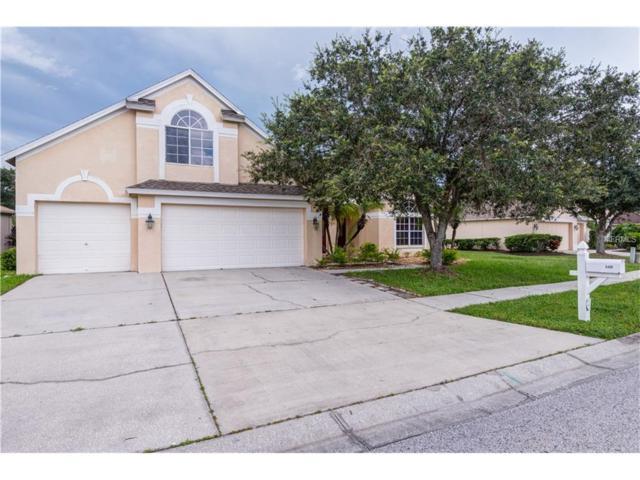 5406 Silver Charm Terrace, Wesley Chapel, FL 33544 (MLS #T2895208) :: Cartwright Realty
