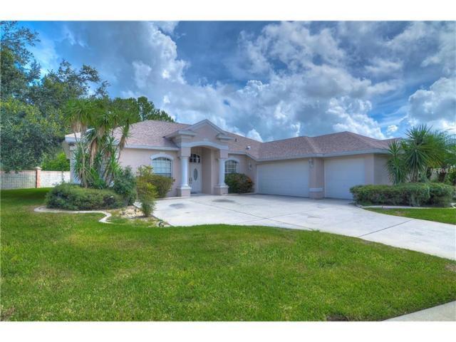 22247 Magnolia Trace Boulevard, Lutz, FL 33549 (MLS #T2895210) :: The Duncan Duo & Associates