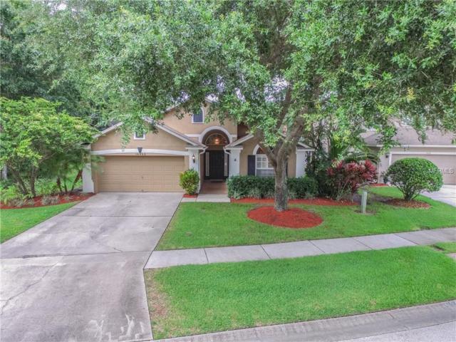 14440 Pepperpine Drive, Tampa, FL 33626 (MLS #T2895305) :: Delgado Home Team at Keller Williams