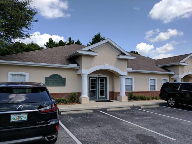 11357 Countryway Boulevard, Tampa, FL 33626 (MLS #T2895317) :: Team Bohannon Keller Williams, Tampa Properties