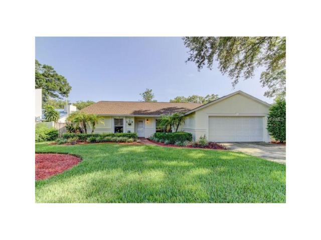 17729 Rivendel Road, Lutz, FL 33549 (MLS #T2895375) :: Delgado Home Team at Keller Williams