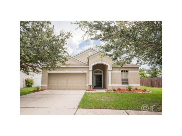 13222 Cherry Bark Circle, Riverview, FL 33579 (MLS #T2895384) :: Team Bohannon Keller Williams, Tampa Properties