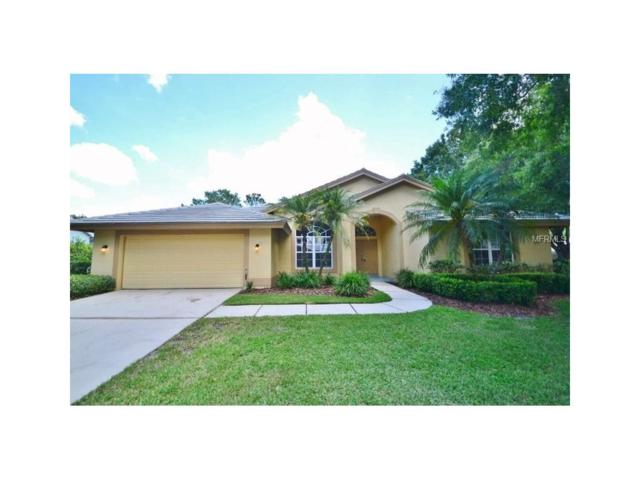 17713 Grey Eagle Road, Tampa, FL 33647 (MLS #T2895422) :: Team Bohannon Keller Williams, Tampa Properties