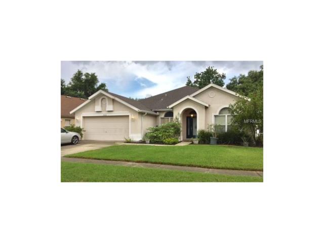 18225 Collridge Drive, Tampa, FL 33647 (MLS #T2895427) :: Team Bohannon Keller Williams, Tampa Properties