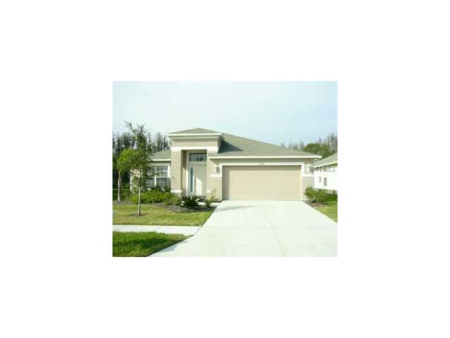 31325 Kirkshire Court, Wesley Chapel, FL 33543 (MLS #T2895459) :: Team Bohannon Keller Williams, Tampa Properties