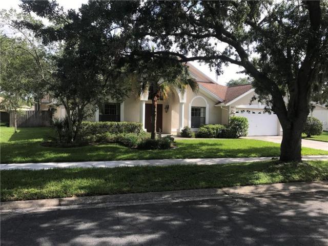 9422 Rockrose Drive, Tampa, FL 33647 (MLS #T2895489) :: Team Bohannon Keller Williams, Tampa Properties