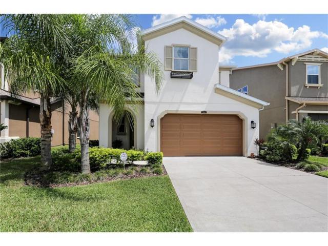 29062 Perilli Place, Wesley Chapel, FL 33543 (MLS #T2895499) :: Delgado Home Team at Keller Williams