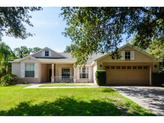 9630 Greenbank Drive, Riverview, FL 33569 (MLS #T2895501) :: Team Bohannon Keller Williams, Tampa Properties