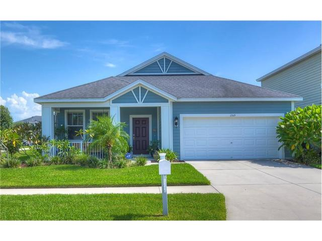 11519 Balintore Drive, Riverview, FL 33579 (MLS #T2895514) :: Team Bohannon Keller Williams, Tampa Properties