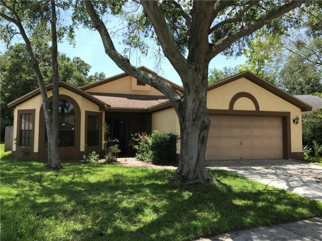 1520 Attleboro Lane, Brandon, FL 33511 (MLS #T2895522) :: Team Bohannon Keller Williams, Tampa Properties