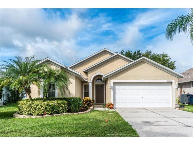 16630 Fairbolt Way, Odessa, FL 33556 (MLS #T2895578) :: Team Bohannon Keller Williams, Tampa Properties
