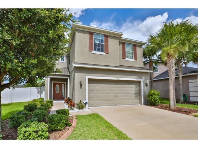 7010 Forest Mere Drive, Riverview, FL 33578 (MLS #T2895579) :: The Duncan Duo & Associates