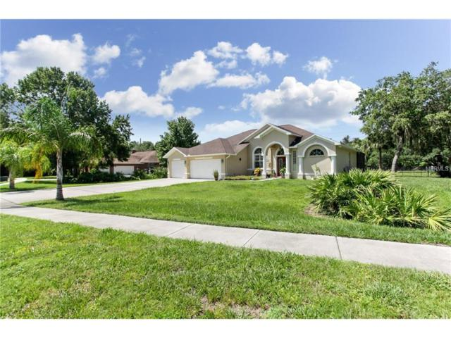 10115 Albyar Avenue, Riverview, FL 33578 (MLS #T2895593) :: Team Bohannon Keller Williams, Tampa Properties