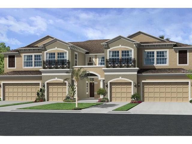 11431 Crowned Sparrow Lane #1003, Tampa, FL 33626 (MLS #T2895633) :: Delgado Home Team at Keller Williams