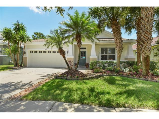 6039 Gannetdale Drive, Lithia, FL 33547 (MLS #T2895654) :: The Duncan Duo & Associates