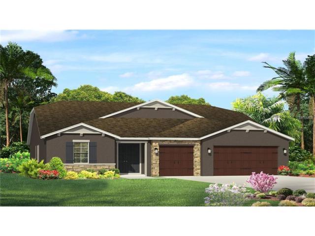 31711 Fairhill Drive, Wesley Chapel, FL 33543 (MLS #T2895678) :: Delgado Home Team at Keller Williams