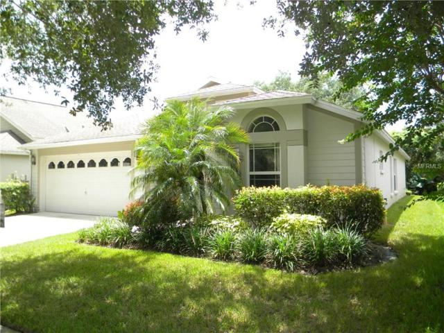 10129 Heather Sound Dr. Drive, Tampa, FL 33647 (MLS #T2895691) :: Delgado Home Team at Keller Williams