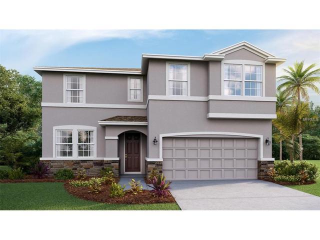 7537 Lantern Park Avenue, Apollo Beach, FL 33572 (MLS #T2895738) :: Delgado Home Team at Keller Williams