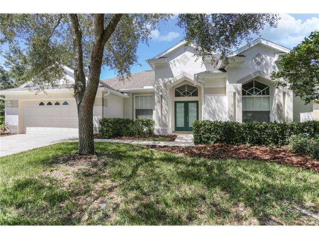 18148 Heron Walk Drive, Tampa, FL 33647 (MLS #T2895820) :: Team Bohannon Keller Williams, Tampa Properties