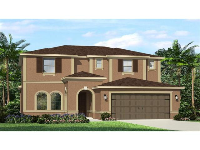 4506 Pensford Court, Wesley Chapel, FL 33543 (MLS #T2895860) :: The Duncan Duo & Associates